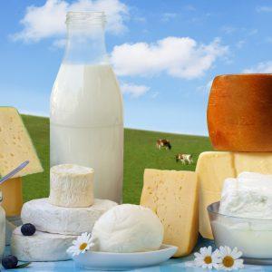 ost & yoghurt & kjølevarer